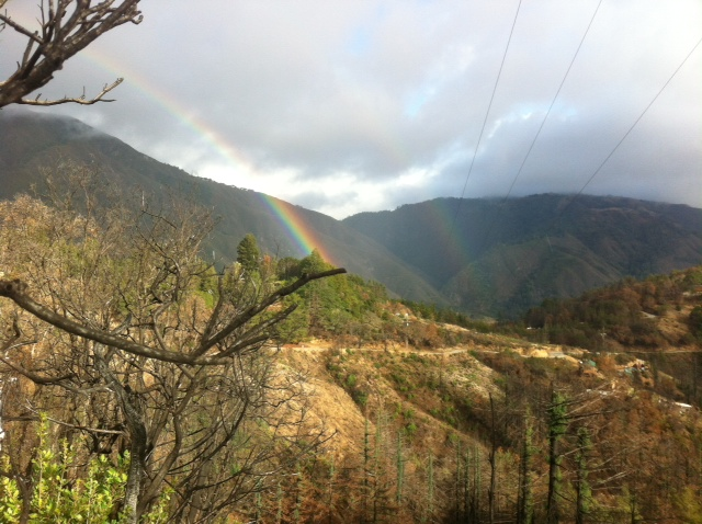 GNoTown Rainbow GNOMEvember 1st, 2014